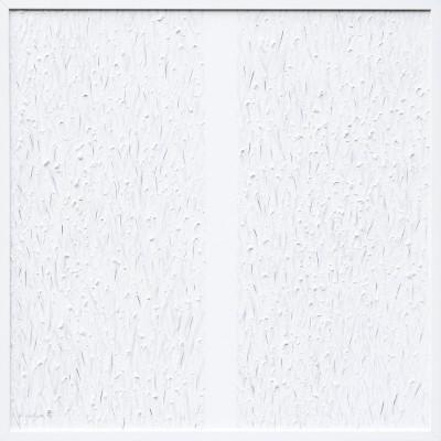 White Monochrom  nr. XVII